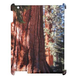 Giant Sequoia Ipad Case