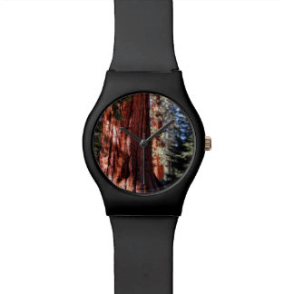 Giant Sequoia Watch