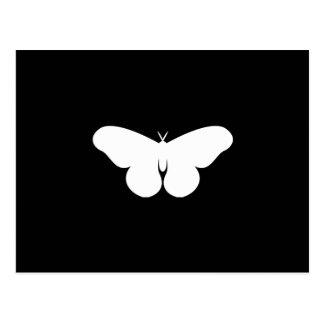 Giant Silkworm Moth Postcard