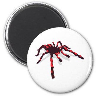 Giant Spider 6 Cm Round Magnet