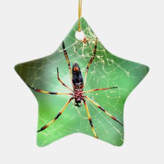 Giant Spider Ceramic Star Decoration