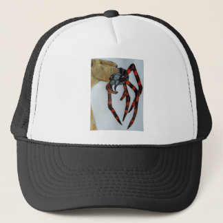 Giant spider fights lioness.JPG Trucker Hat