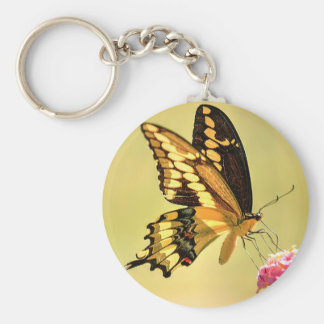 Giant Swallowtail Butterfly Keychain