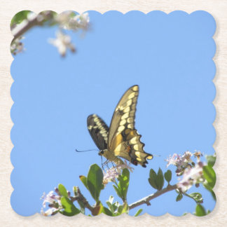 Giant Swallowtail Butterfly Paper Coaster