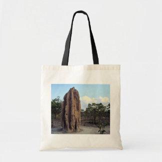 Giant termite mound, Northern Territory, Australia