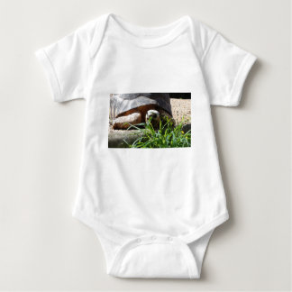 Giant Tortoise Baby Bodysuit
