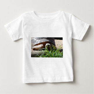 Giant Tortoise Baby T-Shirt
