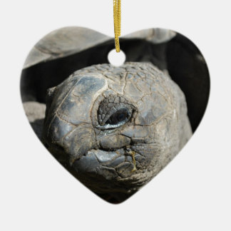 Giant Tortoise Ceramic Heart Decoration