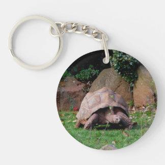 Giant Tortoise Double-Sided Round Acrylic Key Ring