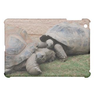 giant tortoises case for the iPad mini