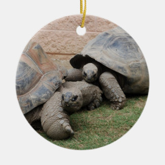 giant tortoises christmas ornament