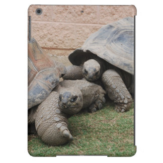 giant tortoises cover for iPad air