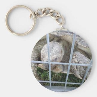 Giant Turtle Keychain