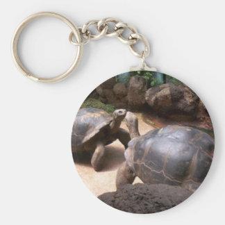 Giant Turtle Kiss Basic Round Button Key Ring