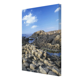 Giants Causeway, County Antrim, Northern Gallery Wrap Canvas