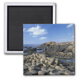 Giants Causeway, County Antrim, Northern Square Magnet