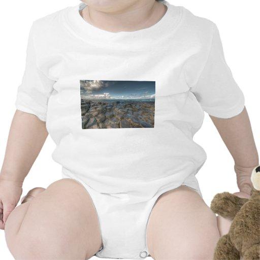 Giant's Causeway, Northern Ireland Baby Creeper