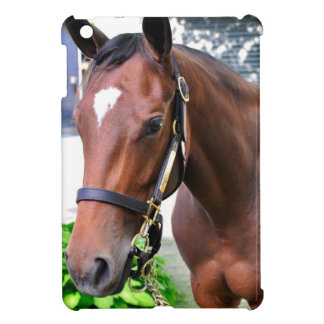 Giant's Causeway's Filly iPad Mini Cases
