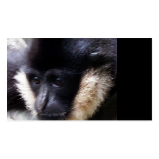 Gibbon Ape Pastel Business Card Templates