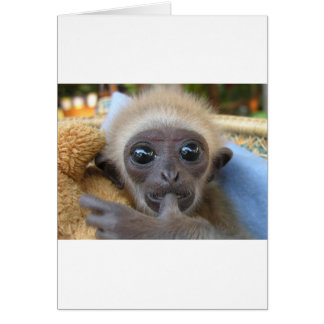 Gibbon Baby Card