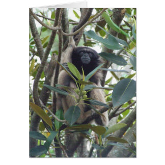 Gibbon Card