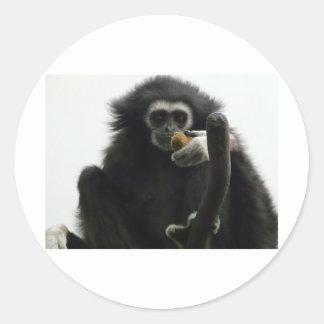 gibbon classic round sticker