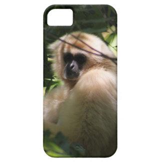 Gibbon Monkey iPhone 5 Cases