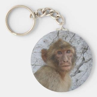 Gibraltar Monkey key chain, choose style Basic Round Button Key Ring