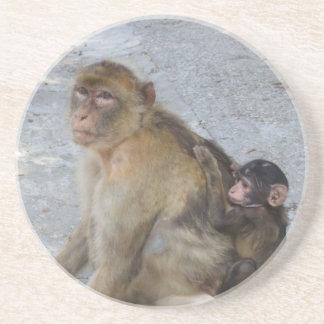 Gibraltar Monkeys coaster