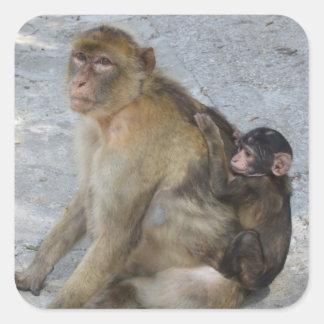 Gibraltar Monkeys stickers