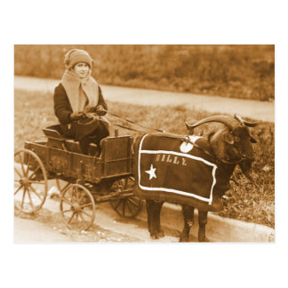 Giddy up, Billy! Vintage Goat Girl in Wagon Postcard