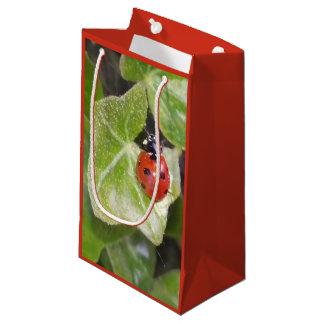 Gift bag ladybird