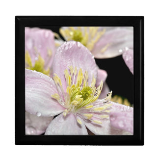 Gift box with pink clematis