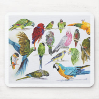 Gift for Parrot lovers everywhere Mouse Mat