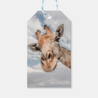 Gift Tag with Giraffe Sticking out Neck