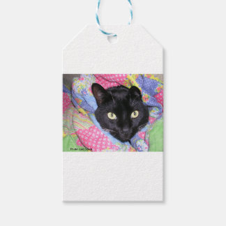 Gift Tags: Funny Cat wrapped in Blankets Gift Tags
