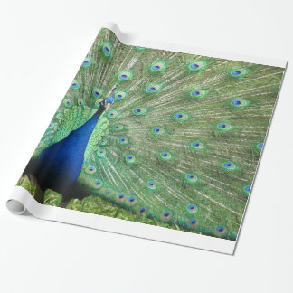 Gift Wrap - Peacock Wrapping Paper