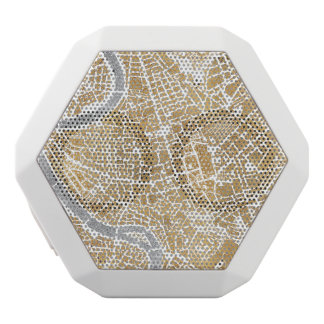 Gilded City Map Of Rome
