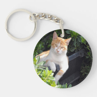 Ginger and White Cat Key Ring