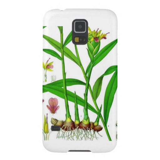 Ginger Galaxy Nexus Covers