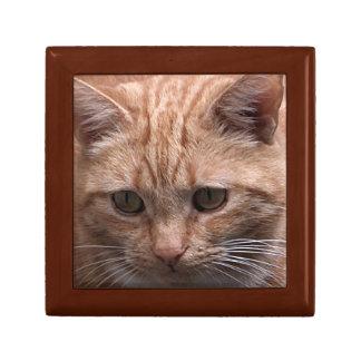 Ginger Cat Gift Box
