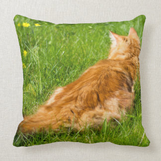 Ginger Cat In The Springtime Cushion