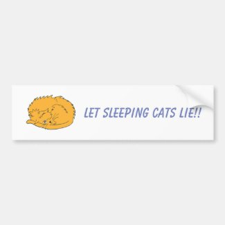Ginger Cat Let Sleeping Cats Lie