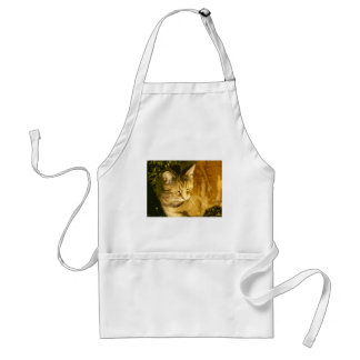 Ginger cat standard apron