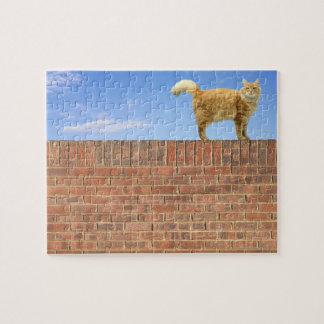 Ginger Cat Standing on Brick Wall Jigsaw Puzzle
