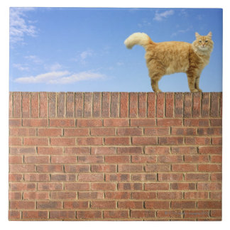 Ginger Cat Standing on Brick Wall Large Square Tile