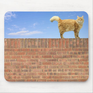 Ginger Cat Standing on Brick Wall Mouse Mat