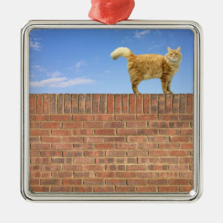 Ginger Cat Standing on Brick Wall Silver-Colored Square Decoration