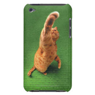 Ginger cat stretching out paw barely there iPod cover