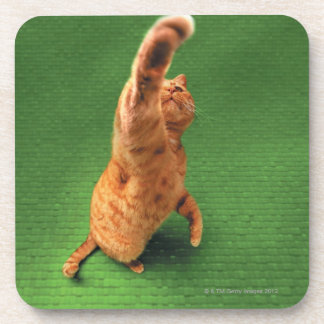 Ginger cat stretching out paw coaster